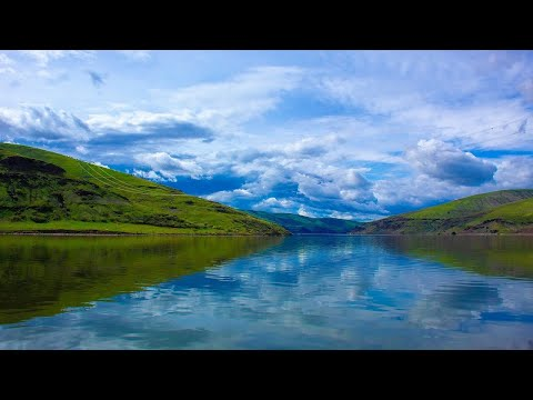 Calming Classical Guitar Music Background for Relaxing, Sleep, Study, Meditation & Stress Relief