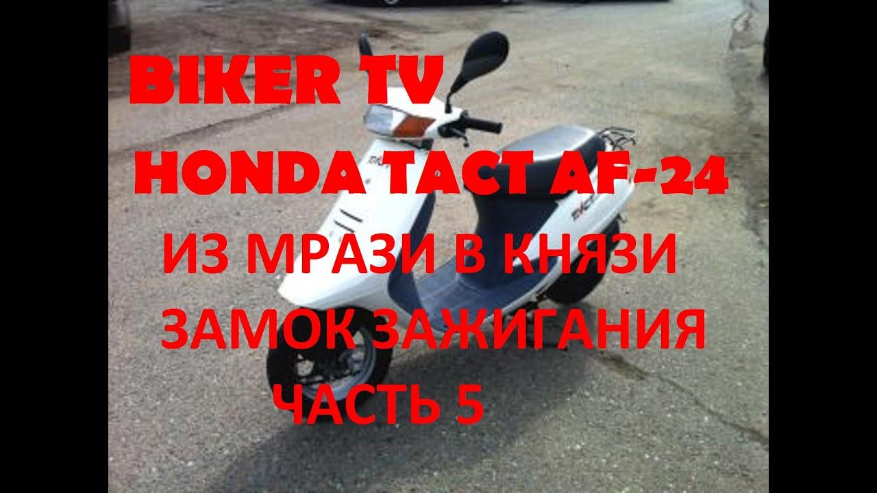 Honda Tact 16  fullmark
