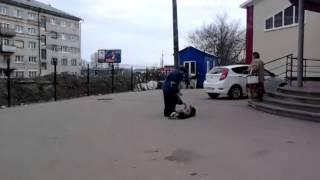 Мужик и собака