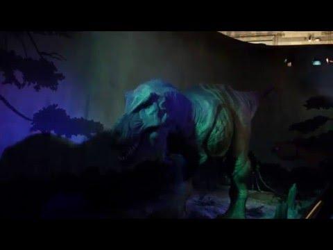 Natural History Museum Dinosaur T-REX