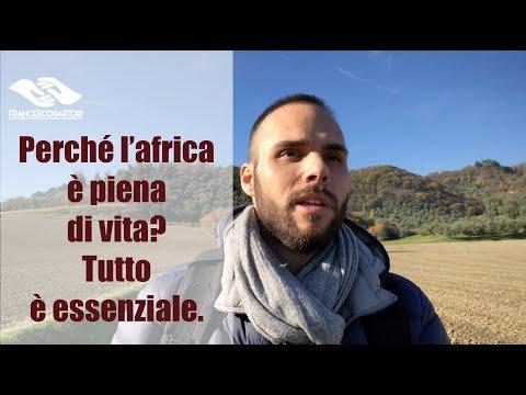 Perché l'africa è piena di vita? Tutto è essenziale.