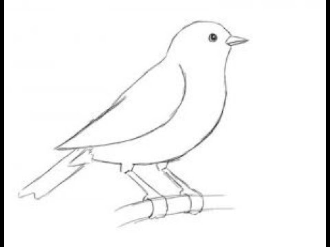 Как нарисовать орла на ветке
