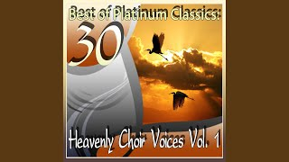 Requiem for 5 Soloists, 8-voice Mixed Double Choir and Orchestra : Tractus, Absolve Domine