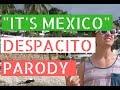 It's Mexico ft. Dos Gringos (Despacito Parody) // Life in Puerto Vallarta Vlog
