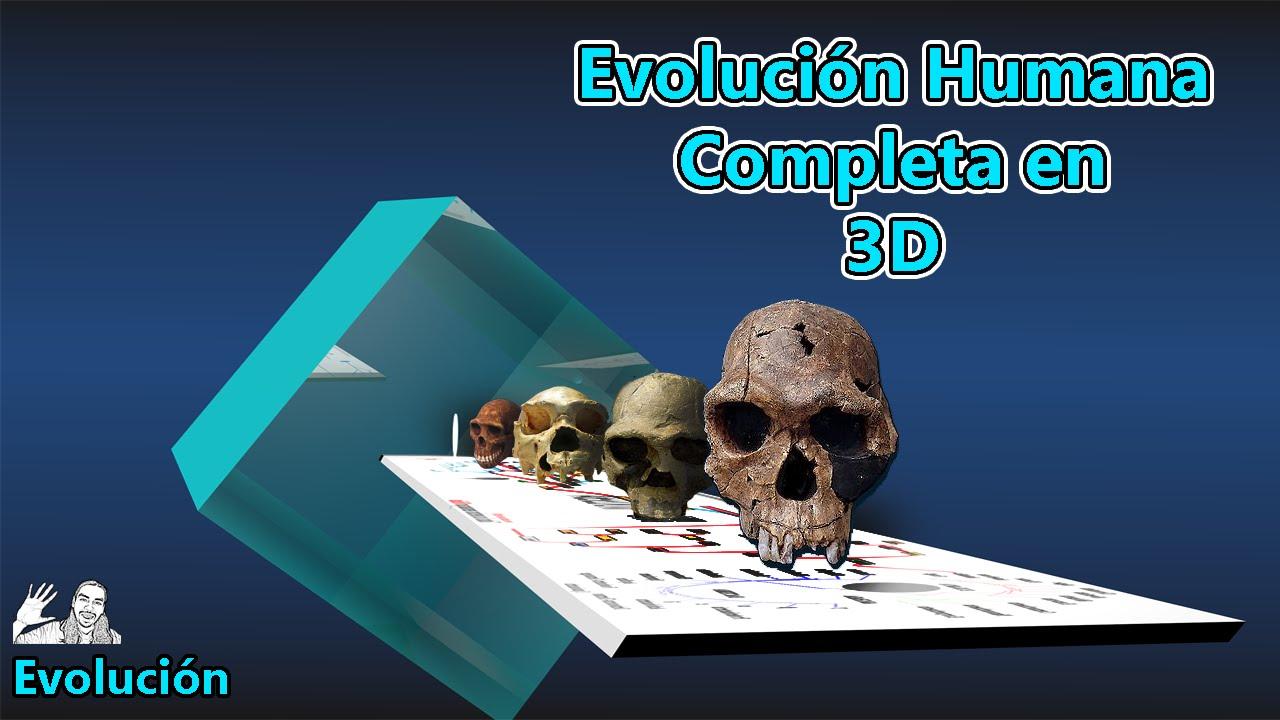 Evolucion del Hombre en 3D