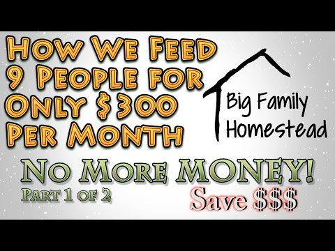 How We feed 9 on $300 Per Month NO MORE MONEY Pt 1 of 2