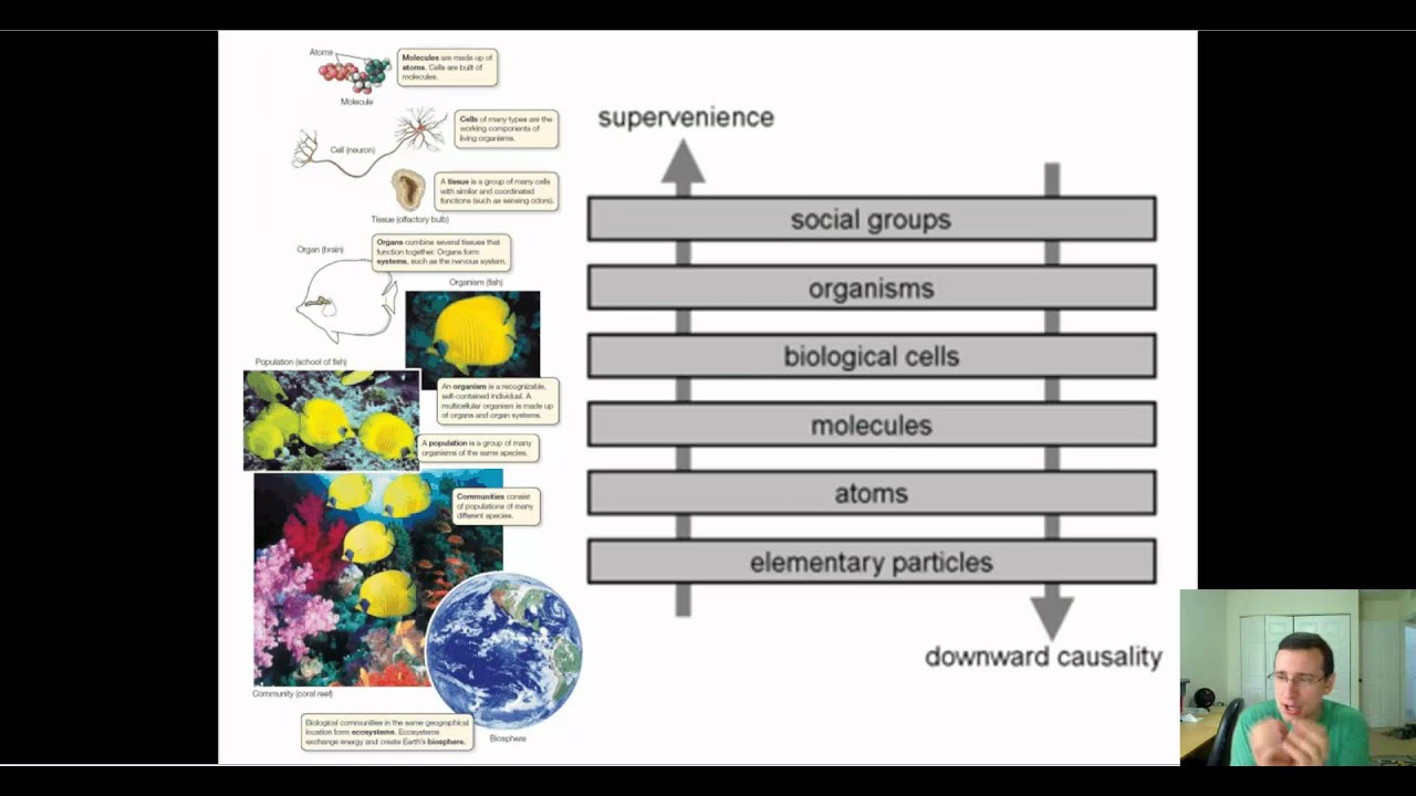 Systems Biology Emergent Properties Advanced Youtube