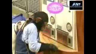 Repeat youtube video ขำกลิ้งลิงกับหมา (V.12 Full) ตอน ภารกิจเก็บเกาลัดในฤดูใบไม้ร่วง