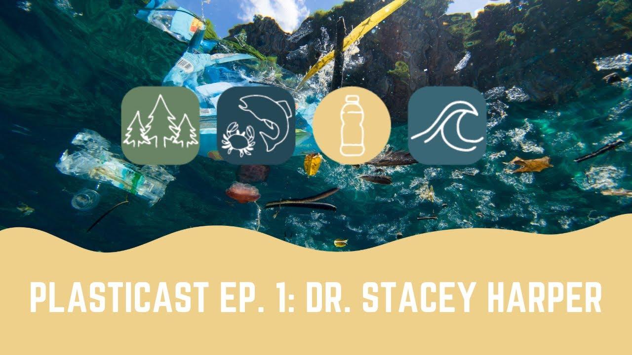 PLASTICAST: Ep1 - Dr. Stacey Harper