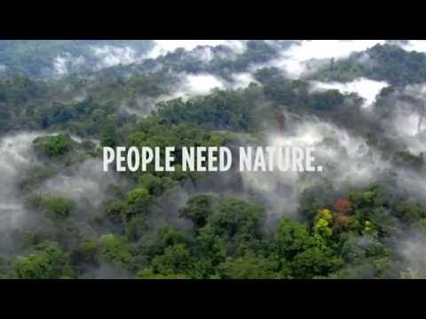 Sustainability Events: Emerging Trends in Conservation