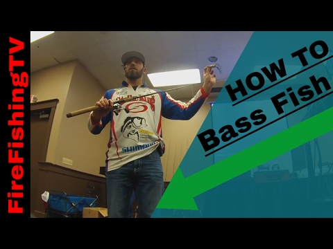 Bass Fishing Basics, How to bass fish for beginners from the sportsman show