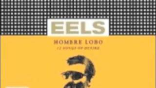 Eels - Ordinary Man