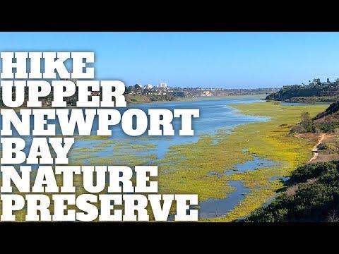 Upper Newport Bay Nature Preserve Hike - HikingGuy.com