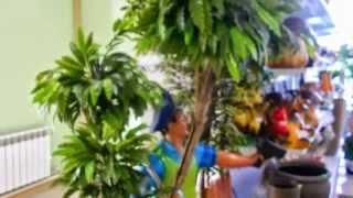 Где купить искусственные цветы декоративные для интерьера квартиры ландшафта сада дачи дома(Где купить искусственные цветы Купить http://sad-deco.ru Помочь купить искусственные деревья оптом - наша работа...., 2015-04-29T16:33:56.000Z)