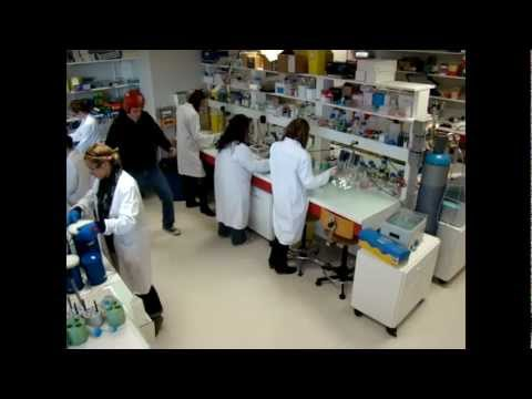 Harlem Shake - Research Laboratory, Toulouse, France