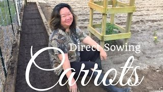 HD How to Grow Carrots by Direct Sowing