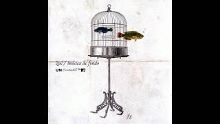 Zoé - Sombras (MTV Unplugged) Letra