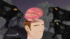 Depression - Zusammenhang mit Stress und Entzündungsreaktionen im Körper (alles wissen, hr)