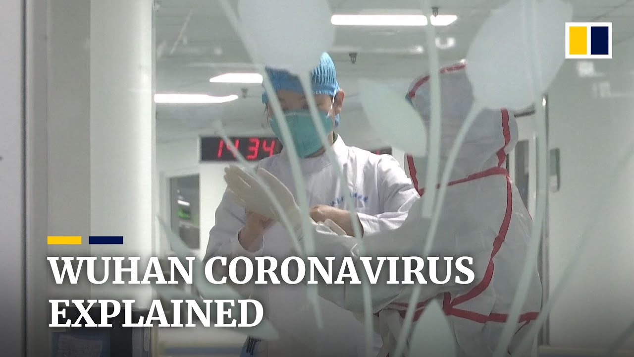 A look at the Wuhan laboratory at the center of China's coronavirus ...