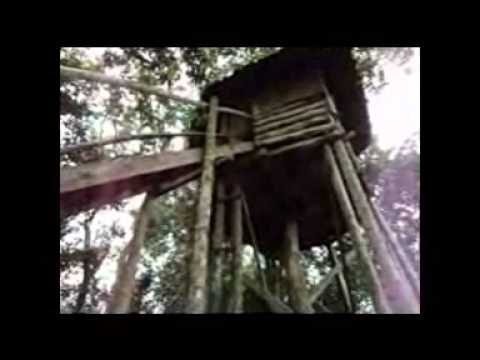 Exploring a real treehouse in Uganda