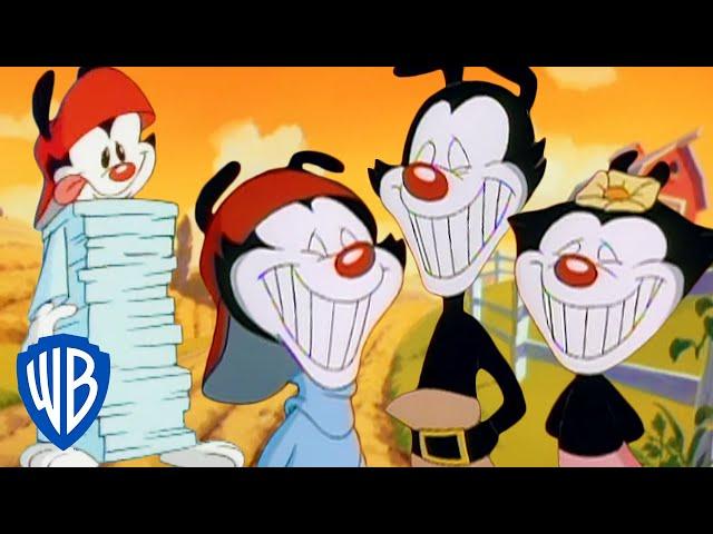 Animaniacs | The Warners' Best Pranks | Classic Cartoon Compilation | WB Kids