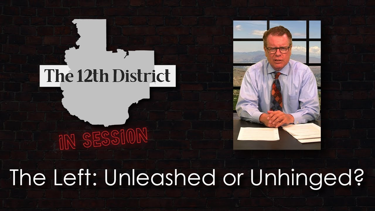 The 12th District – The Left: Unleashed or Unhinged? – March 12, 2019