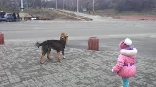 Как мы избавились от соски))