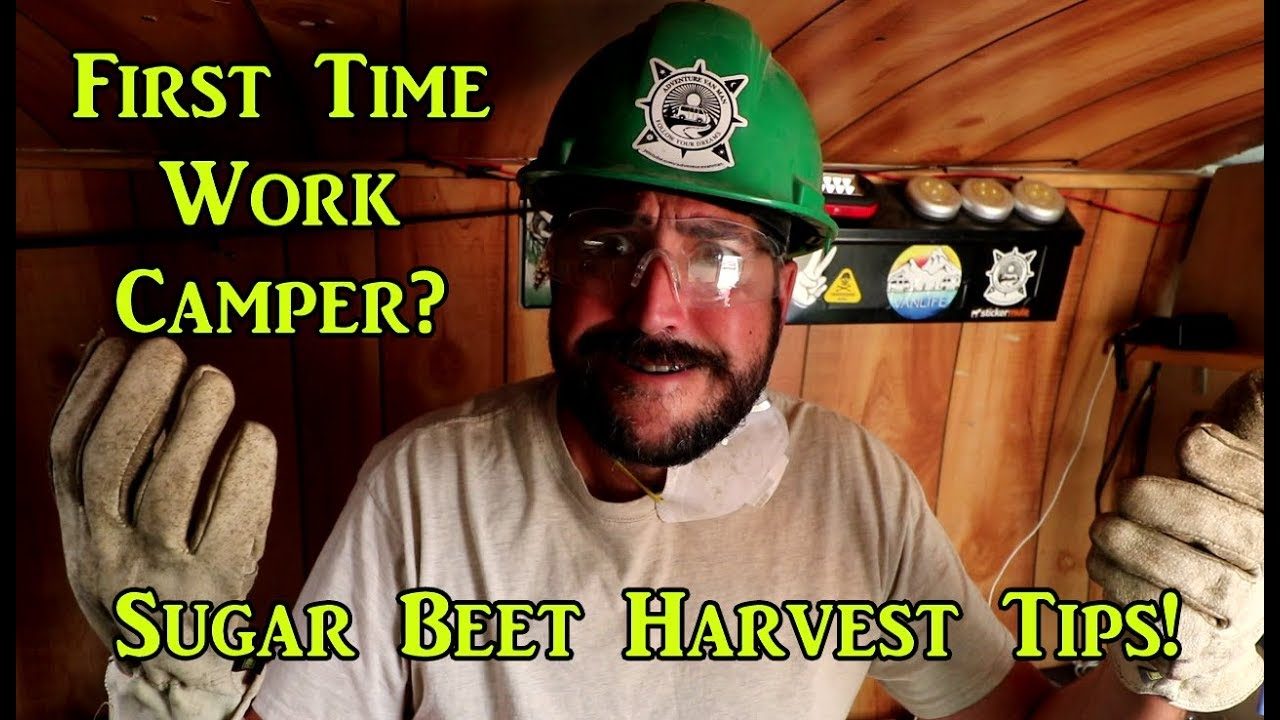 tips-for-sugar-beet-harvest-work-camping-job-vanlife-on-the-road