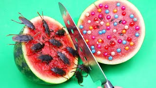 STOP MOTION COOKING  - How to make WATERMELON Food Mukbang - Funny Videos ASMR eating