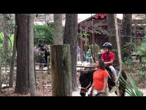 Riverbanks zoo Columbia South Carolina riding a pony