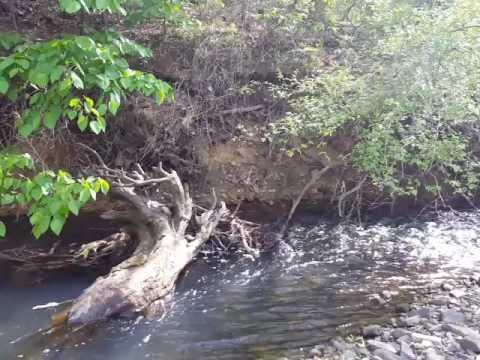 Eastern Oklahoma Recreational Land for Sale