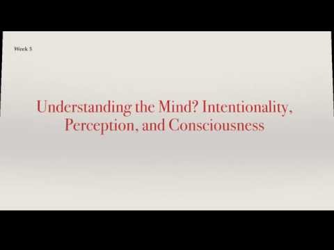 Understanding the Mind? Intentionality, Perception, and Consciousness