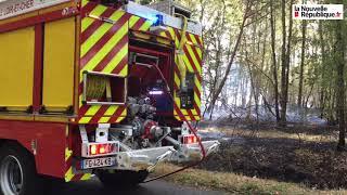 VIDÉO. Un incendie ravage 70 ha de forêt en Sologne