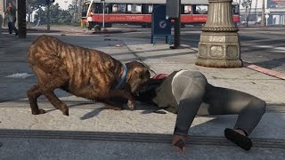 【GTA5】犬になって女の人のお○ぱいに噛み付いてみた!