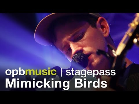Mimicking Birds -  Performance and Interview (opbmusic)