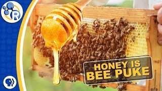 Honey is Really Bee Puke