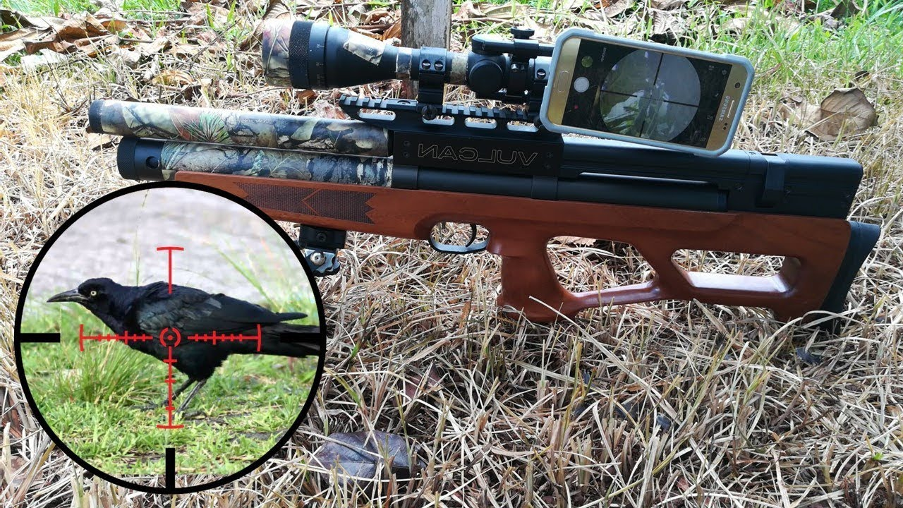 Control de plagas - Rifle PCP Vulcan Cal 25 - Pest control