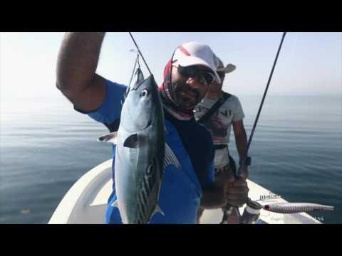 Abu Dhabi - Casting/Jigging by Almehairbi Pro Fishing لايت كاستنق مع فريق المحيربي