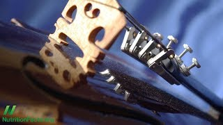 Hudbou proti úzkostným stavům: Mozart vs. metal