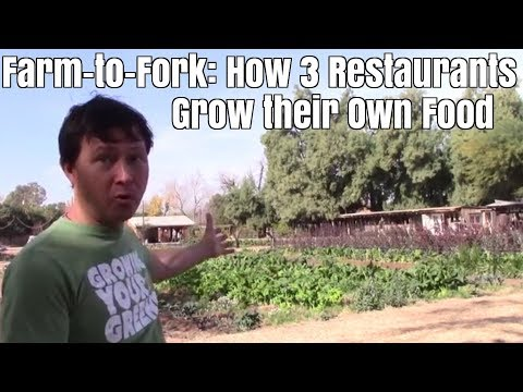 Farm to Fork - How 3 Restaurants Grow Their Own Food in the Desert