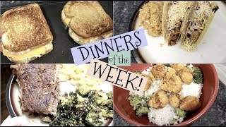 DINNERS OF THE WEEK~ DINNER IDEAS ON A BUDGET!