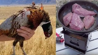Catch & Cook Pheasant Hunting With The Firebox Wood Fueled Camping Stove!