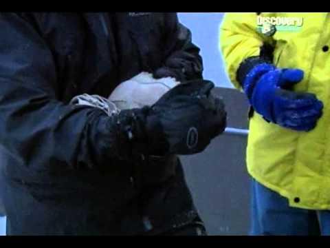 Армейские ботинки НАТО тренировочные резервистов - YouTube