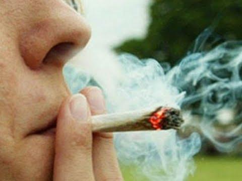 Mariguana para uso lúdico está a punto de legalizarse en México | Noticias con Francisco Zea