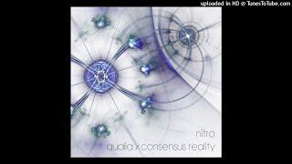 nitro - qualia - consensus reality - 02 consensus reality