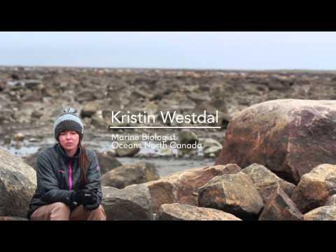 Protecting Manitoba's Beluga Estuaries