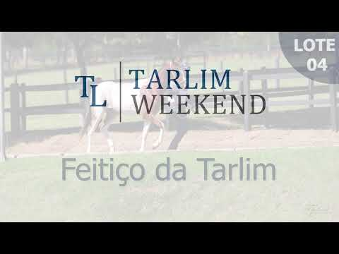 Lote 04 - Feitiço da Tarlim (Potros Tarlim)