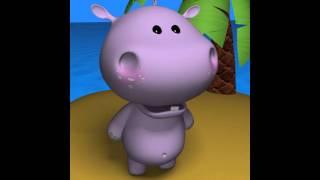 ashique2 hippo style