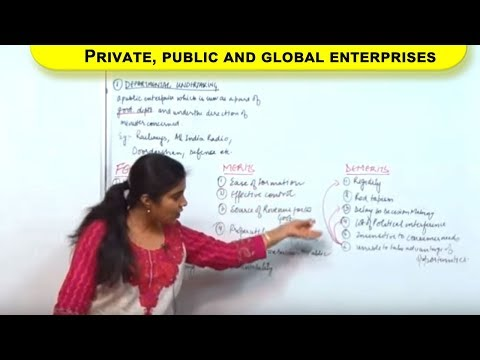 Private,public and global enterprises Cl XI Bussiness Studies by Ruby Singh