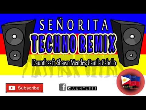 Señorita (Techno Remix)